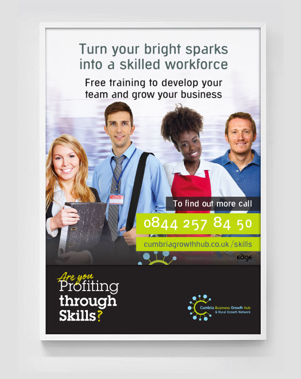Profiting through Skills advert design